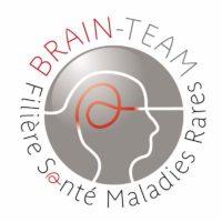 Brain-team